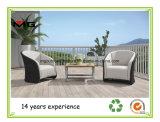 Rattan Garden Furniture/Outdoor Living Furniture/Hotel Sofa Set