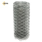"5/8""/1/2""/3/4""/1"" Chicken/Rabbit/Galvanized/Green PVC Coated/Iron/Metal/Welded/Chain Link /Hexgonal Wire Mesh"