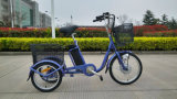 Hot Sale Pedal Assisted Electric Tricycle for Shopping