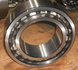 SKF Carb Bearing Price Carb Toroidal Roller Bearing Series