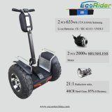 Cheap off Road 2 Wheel Self-Balancing Scooter Brushless Electric Vehicle