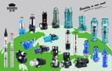 Qjd/SD Type 0.5-10HP Submersible Water Pump Deep Well Pump Borehole Pump