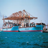 Ocean Freight Service From Shenzhen, China to Dubai, UAE