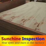 Plywood Inspection Service in China