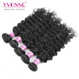 Wholesale Virgin Indian Human Hair Extension