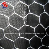 Hexagonal Triple Twist Chicken Wire Mesh Used for Agriculture/Farm/Animal Fence