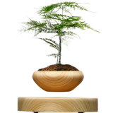 Magnetic Levitation Rotating Bonsai Pot