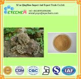 High Quality Coriolus Mushroom Extract /Polysaccharide