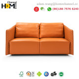 Modern Design Leather Sofa for Home Furniture (HC-8807)