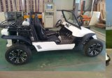 2-Seater UTV Electric Powered by 5kw Motor Hot Pretty Beautiful
