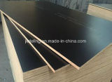 Formply 17 Black Film Plywood for Construction
