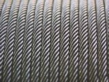 High Quality Ungalvanized and Galvanized Steel Wire Rope