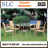 Modern Table and Chairs for Garden/ Rattan Furniture Dining Table (SC-B1011)