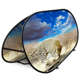 Light Folding Double Sided Oval Pop up a Frame Banner Display