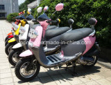 100cc Scooter/110cc Scooter/150cc Scooter/Gogo Gas Scooter