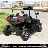 Electric 2 Seat Dune Buggy for Sale with Ce Certificate