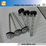 High Quality Umbrella Head Roofing Nails with Washers