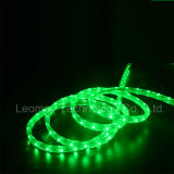 110-220V High Voltage LED Strip