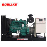 Hot Sale 200kw/250kVA Diesel Electric Generator Sets/Western Engine Cummins with Ce Approved