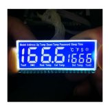 Competitive Price High Quality 7 Segment LCD Displays Digits