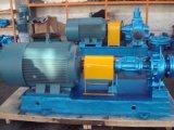 Stainless Steel Gear Pump for Crude Oil/Diesel Oil Pump