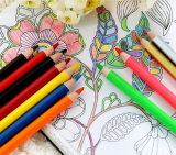 3.5inch Student Use Hb Wood Pencil in Different Color