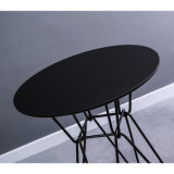Round Wire Metal Hotel Table for Cafe Restaurant (SP-GT458)