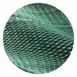 Nylon Multifilament Seine Green Color Fishing Net