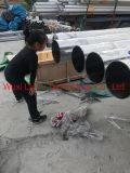 201 202 301 303 304 304L 316 316L 321 310S 410 430 2205 2507 Coil Strip Sheet Plate Wire Wirerope Flange Tube Pipe Stainless Steel