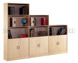 Office Furniture File Cabinet Shelf Storage with Divider (SZ-FCT610)
