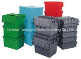 Plastic Injection Foladable Container Mould