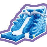 Cheer Amusement Ocean Themed Children Inflatable Water Slide for Amusement Equipment
