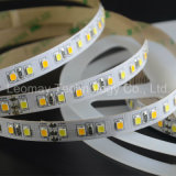 CRI90 CCT Dimmable SMD2835 LED Strips