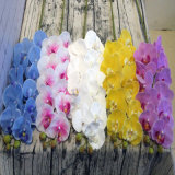 Wholesale Artificial Flowers Orchid PVC Real Touch Orchid Artificial Latex Flowers Phalaenopsis Orchids