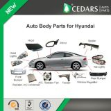 Auto Body Parts and Accessories for Hyundai Solaris