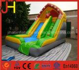 Outdoor Fish Theme Inflatable Slide, Water Slide, Dry Slide