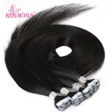 Virgin Human Remy Mini Tape in Hair Extension