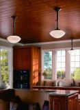 Kitchen Room Steel Glass Shade Ceiling Lighting (KAMX4226B-BW)