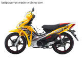 Cub Motorcycle 125cc High Quality Cheap Price