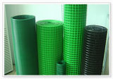 PVC Coated Welded Wire Mesh (DHW05)