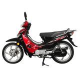 Jincheng Motorcycle Model Jc110-19s Cub