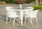 Outdoor Garden White Rattan Dining Table and Chairs (DS-06012W)