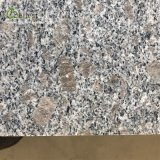 G383 Paving Tile Panel Grey Pearl Flower Granite for Patio Dirveway Garden