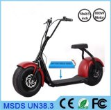 2018 New Promotional Various Citycoco Newest Design 18*9.5 Inch Electric Scooter
