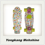 New 22 Inch Plastic Fish Skateboard