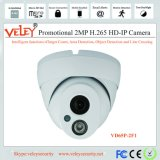 H. 265 2MP Mini Camera CCTV IP Camera for Indoor Use