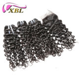 Machine Weft No Sheddiing 10A Xbl 100% Human Hair