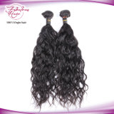 Brazilian Natural Wave Unprocessed Virgin Hair at Wholesale Price