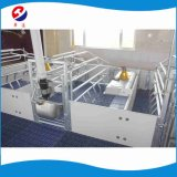 Pig Farming Equipment/Farrowing Crate for Sale Pig Equipment for Farm of Sows