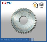 1 Module High Precision Gear with Customized Size